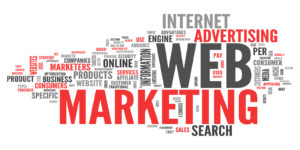 web marketing Boschetto