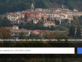 web developer umbria